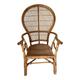 Peacock Chair (591901-p2663908)