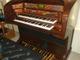 Lowrey Millennium  Limited Edition organs used