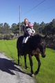 Sweet 16.2hh Thoroughbred gelding needs a ride fro