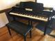 Digital Micro grand (Mini) piano